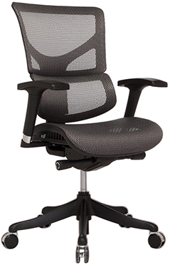 X Chair X2 Dunes Office Shop Equipment